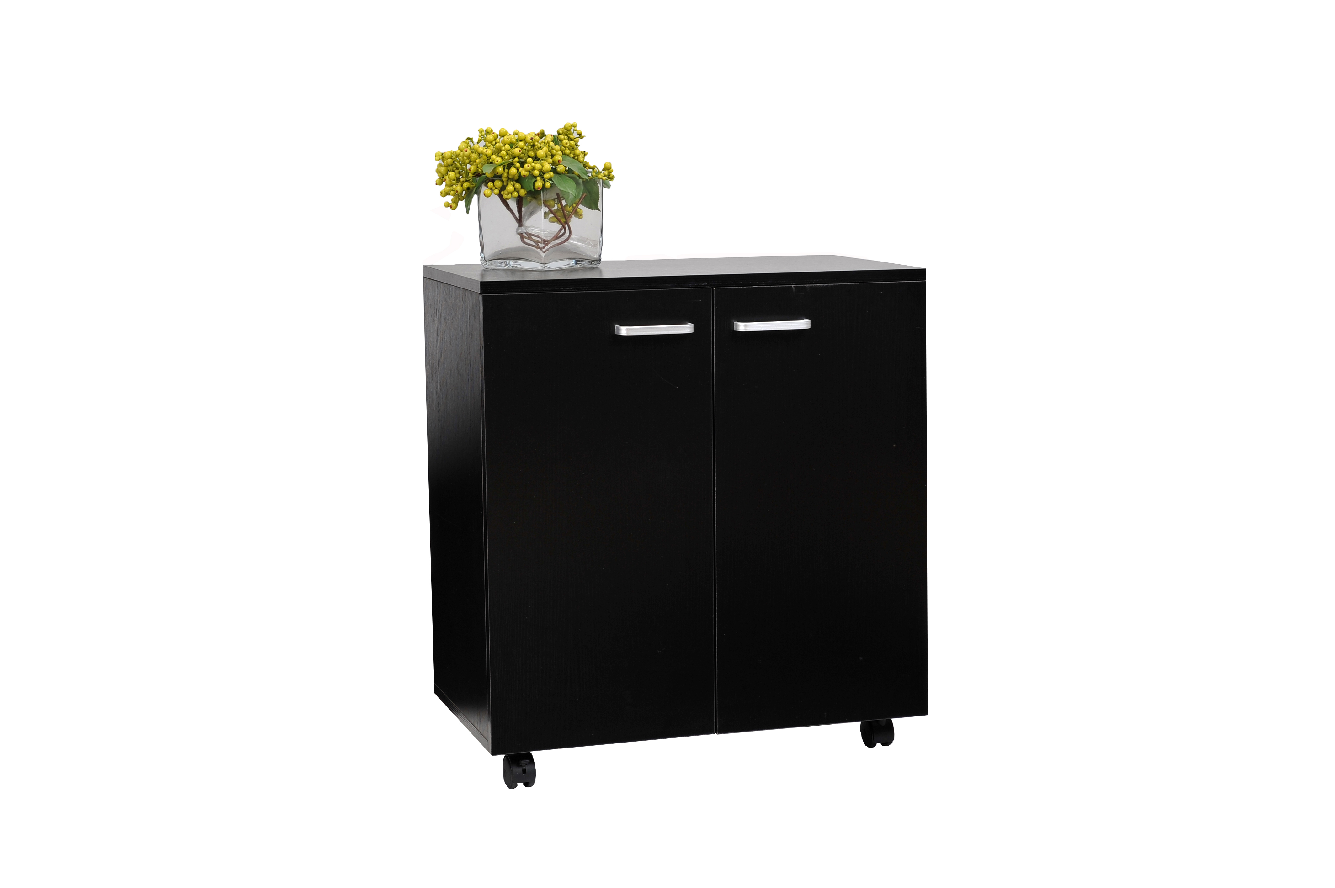 2-door-storage-cabinet-black